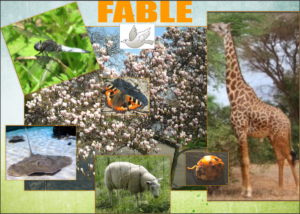 IMPRESSION of 'my' ANIMAL FORESTwithmy own photos: Magnolia, Sheep, Ladybugcopyright free photos: Giraffe, Stingray, Dovephotos by Nynke van Gurp-Smilde: Dragonfly, Butterfly
